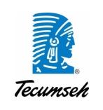 Tecumseh dlya statji
